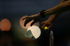 badminton by tpower1978